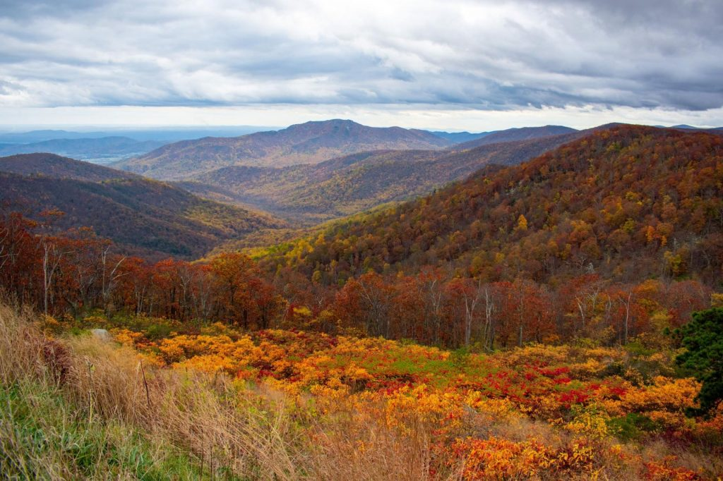 Shenandoah mountains in the fall beautiful colors