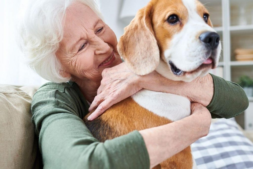 elderly lady sits with a hound dog in her lap