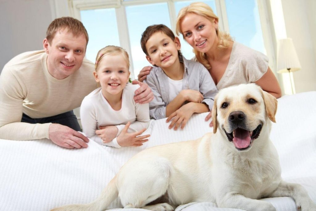 family of four sitting on a sofa with their white dog