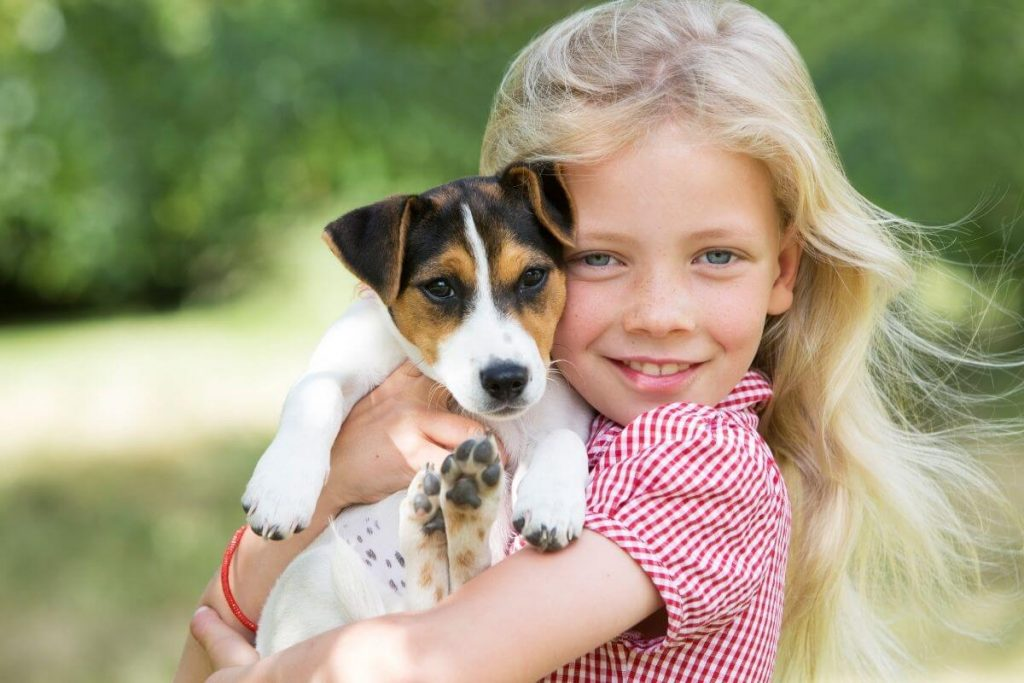 little girl with blonde hair loves a small beagle puppy
