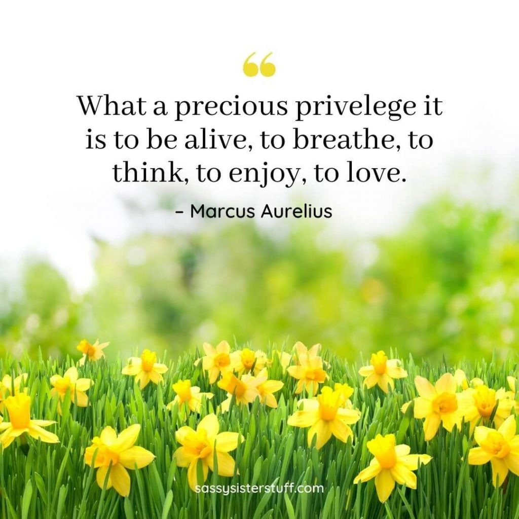 a field of yellow flowers with quote about appreciation