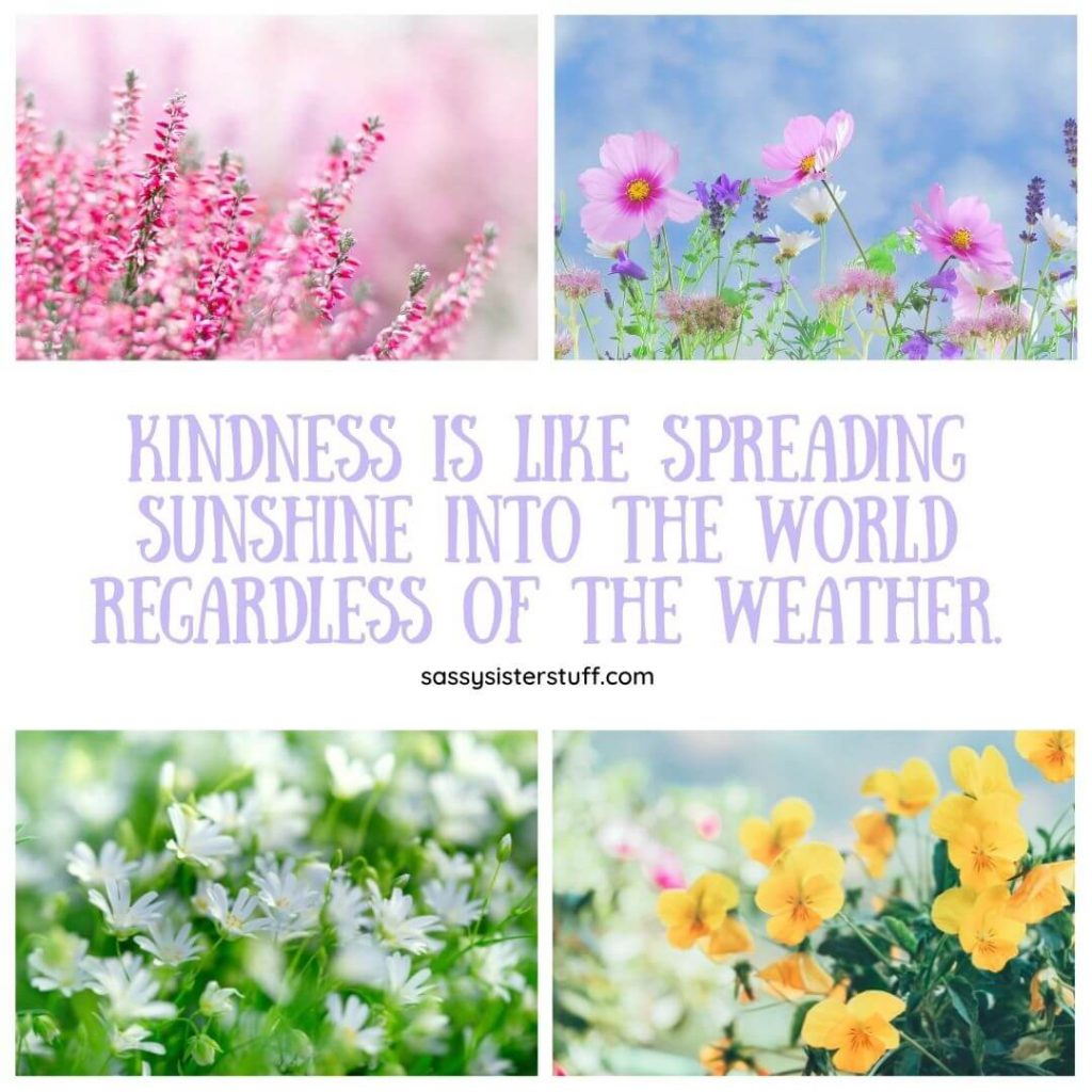 four photos of wild flowers with a kindness quote about sunshine