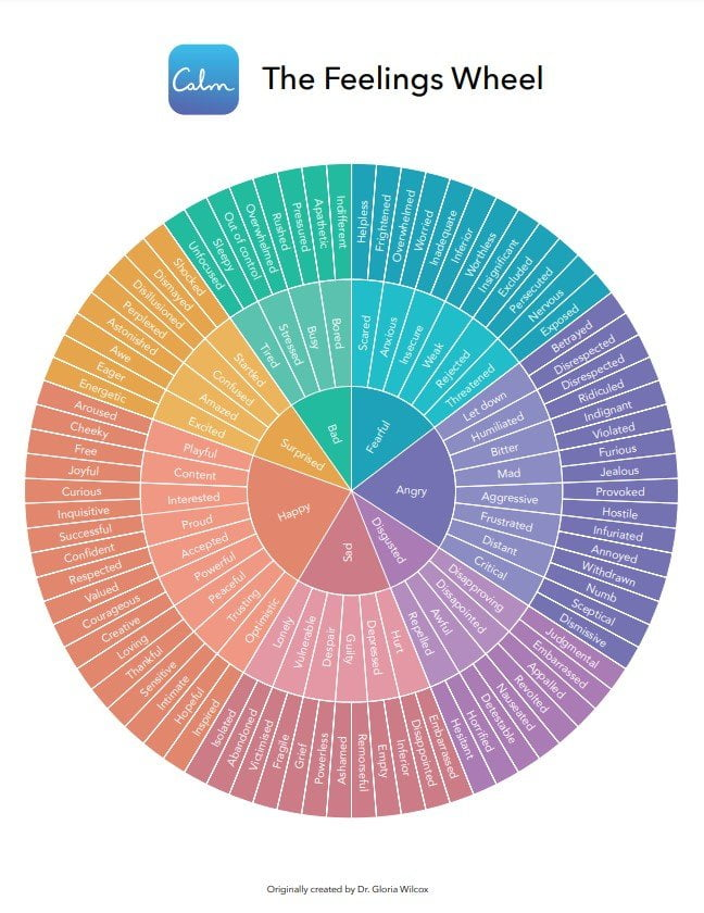 Feelings Wheel Colored Version
